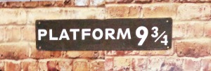 Funny name for a train platform...oh, wait, some other author already used this one...
